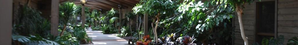 Banner atrium single